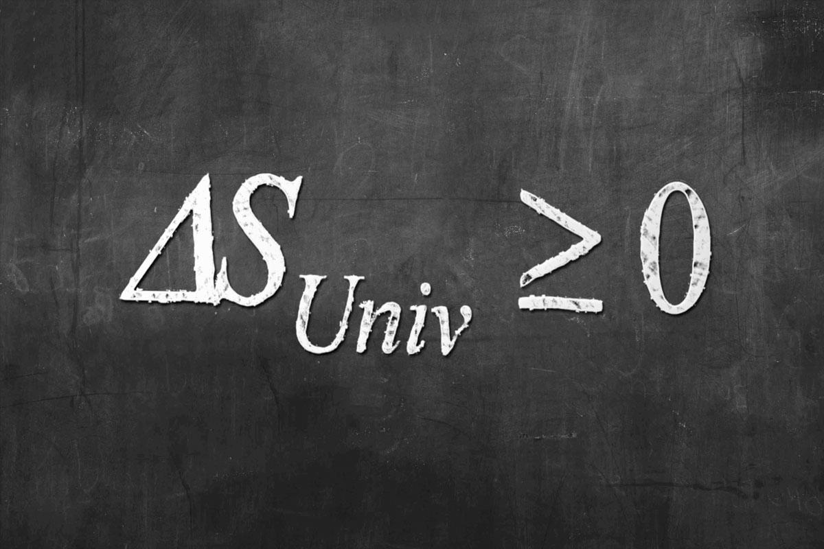DS-Universe